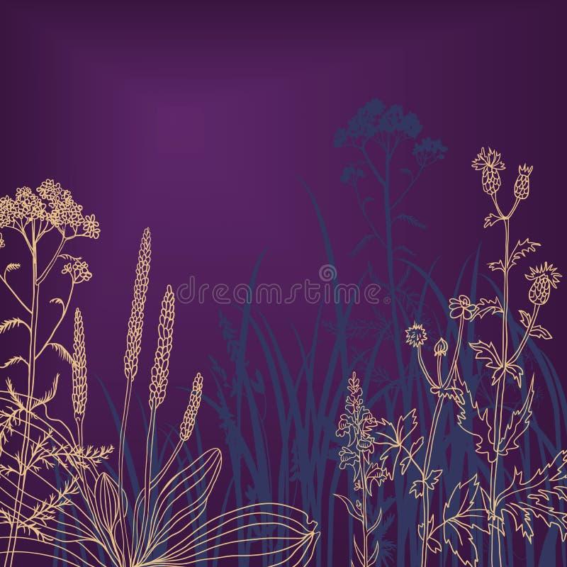 Fleurs et herbe la nuit illustration stock