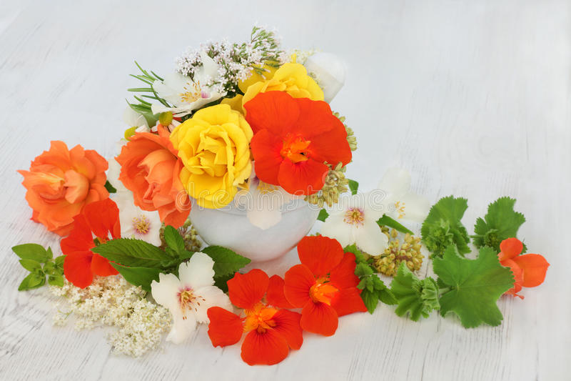 Fleurs et herbes médicinales photographie stock libre de droits