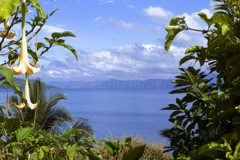 Fleurs et lac Toba. images stock