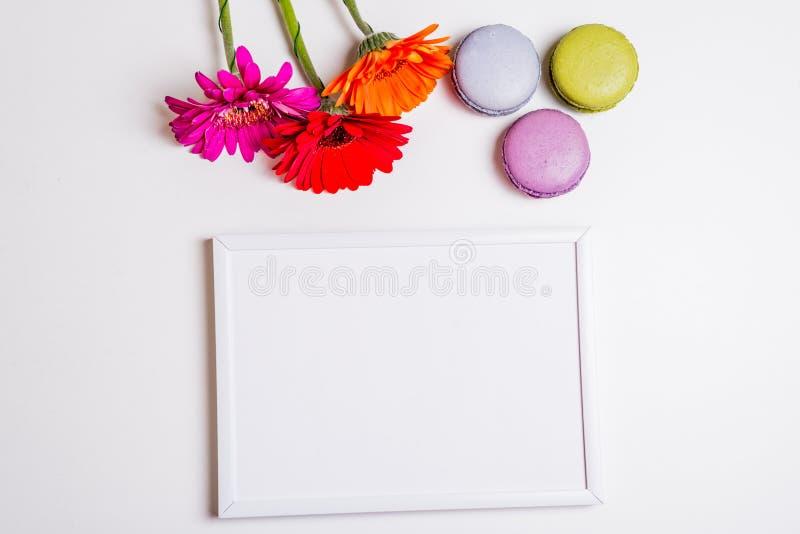 Fleurs et macarons colorés au-dessus du cadre blanc images stock