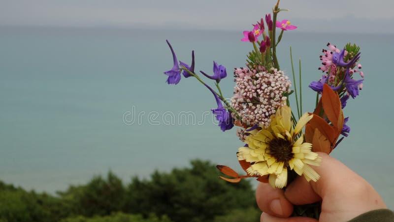 Fleurs et mer images stock