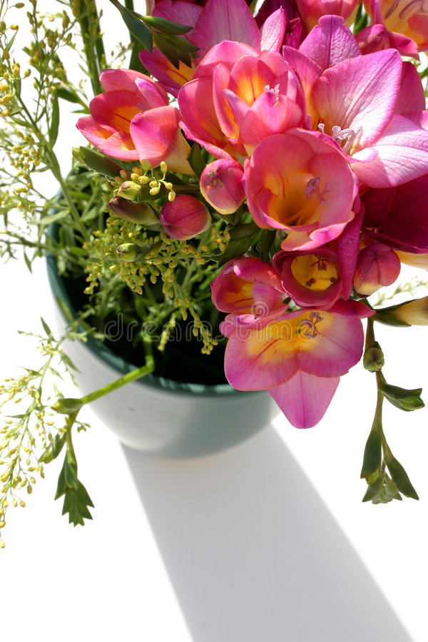 Fleurs et ombre photo stock