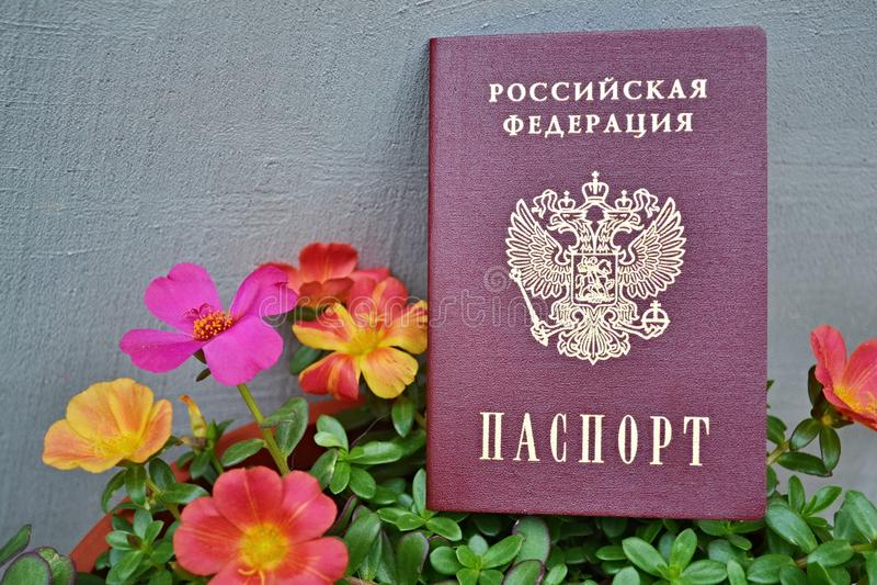 Fleurs et passeport d'un citoyen de la Fédération de Russie photographie stock