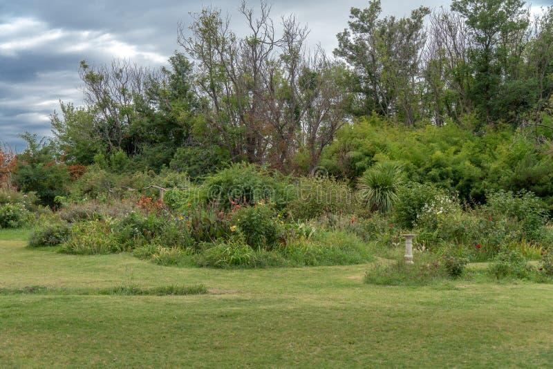 fleurs et plantes dans la ferme photos libres de droits