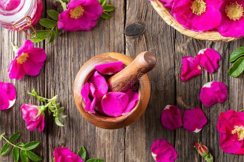 Fleurs fraîches de rugosa de rosa dans un mortier en bois image stock