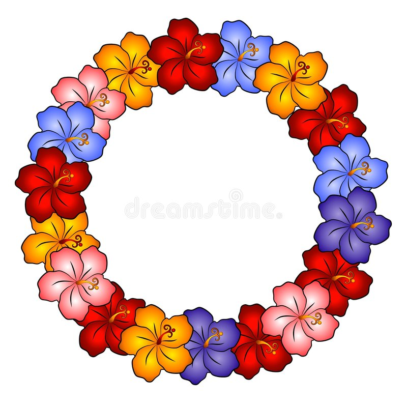 Fleurs hawaïennes de ketmie de leu illustration libre de droits
