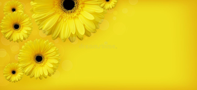 Fleurs jaunes illustration stock