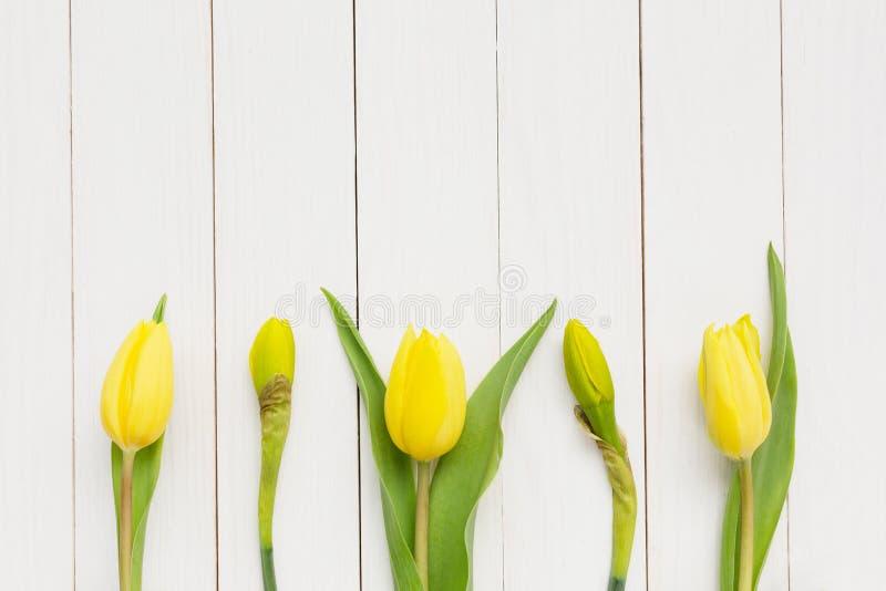 Fleurs jaunes de ressort au-dessus de la table en bois blanche image stock