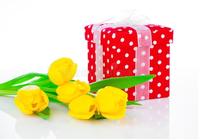 Fleurs jaunes de tulipe avec le boîte-cadeau à pois rouge image libre de droits