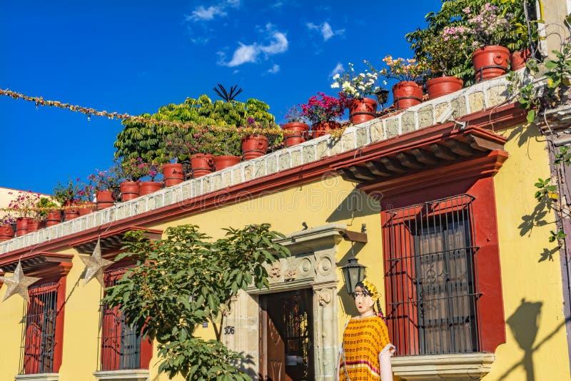 Fleurs jaunes mexicaines color?es Oaxaca Juarez Mexique de rue images stock