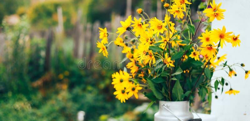 Fleurs jaunes sauvages dans un vase, bouquet sur la rue images libres de droits