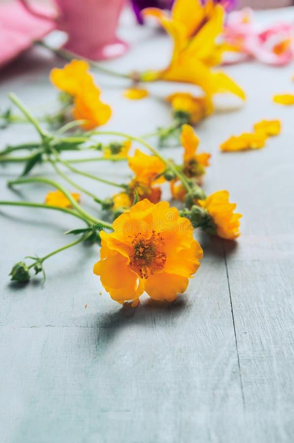Fleurs jaunes sur la table en bois bleue photo libre de droits