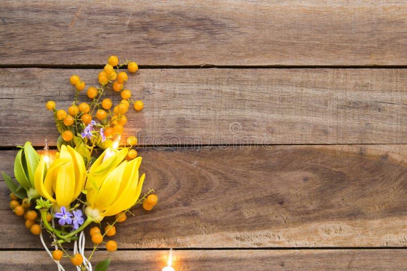 Fleurs jaunes ylang ylang flore locale de l'asie avec arrangement léger plate style de carte postale photos libres de droits
