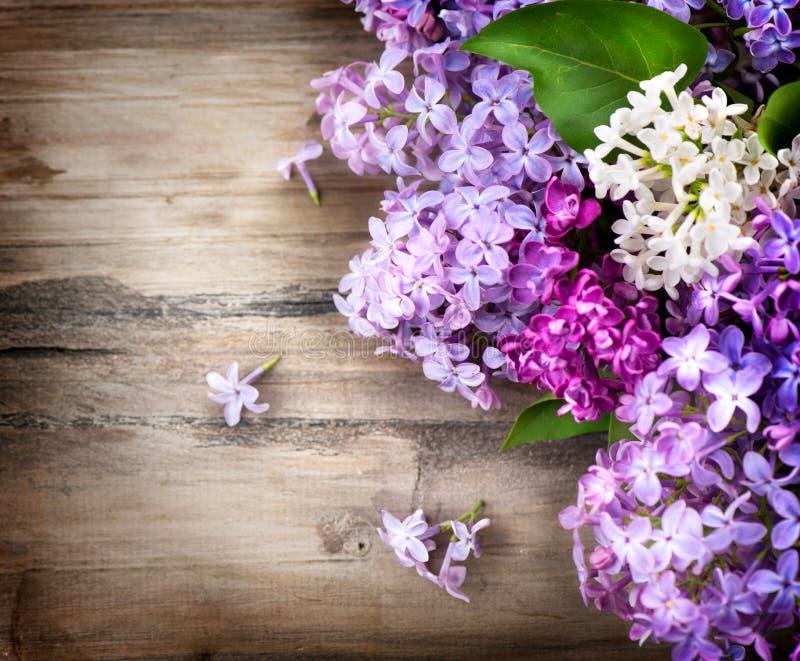 Fleurs lilas au-dessus de fond en bois images stock