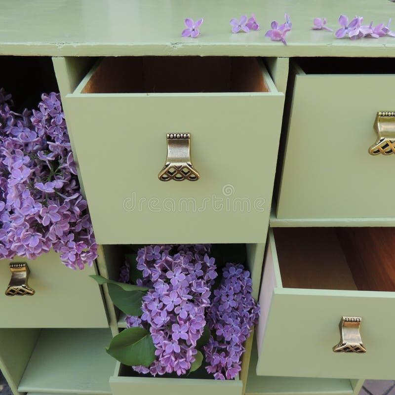 Fleurs lilas dans les tiroirs verts de raboteuse photo libre de droits