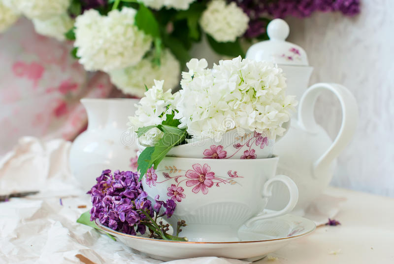 Fleurs lilas de groupe dans une cuvette image libre de droits