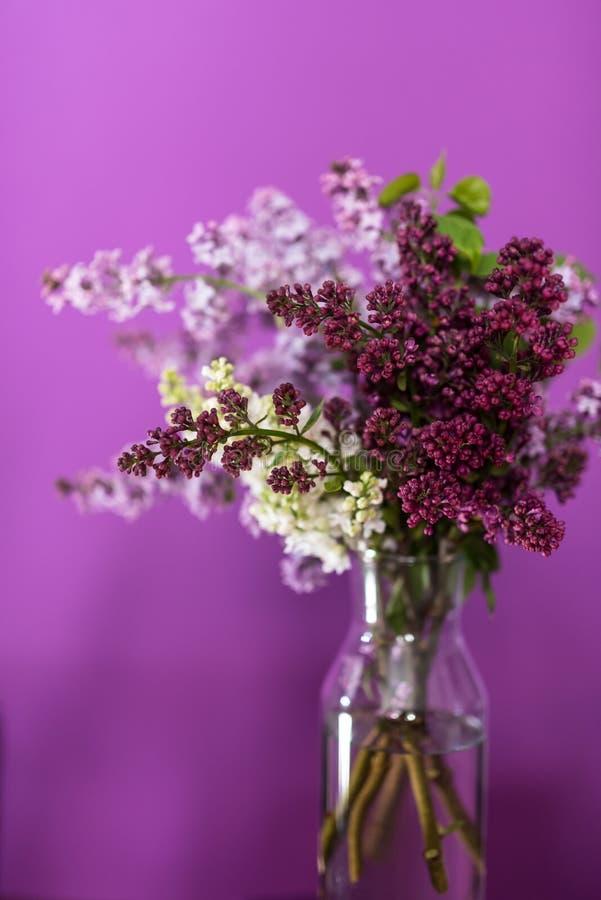 Fleurs lilas fraîches dans un vase en verre simple photos stock