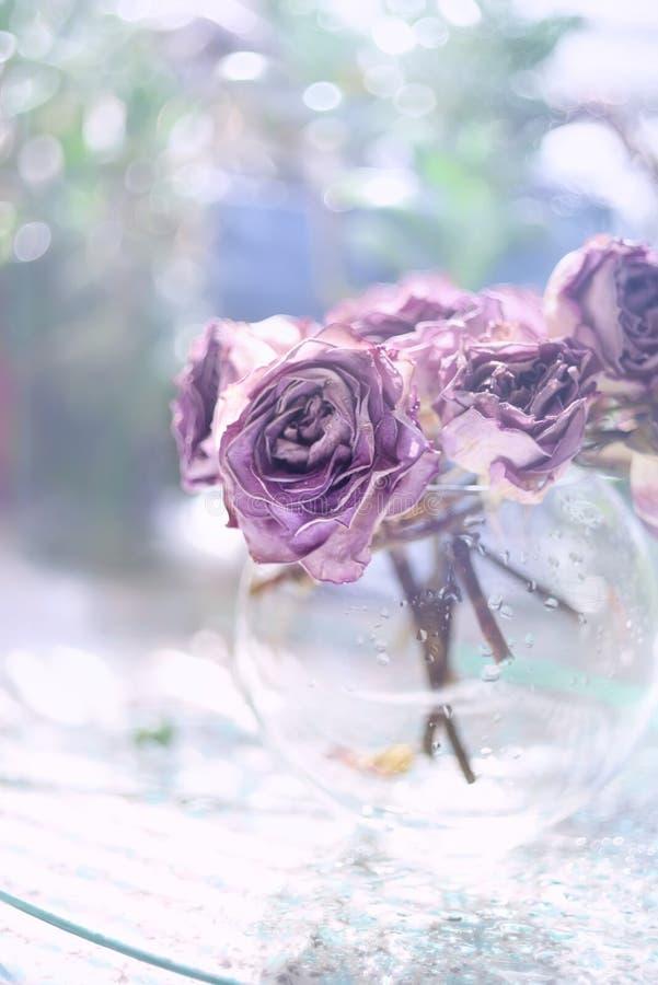 Fleurs mauve très sensibles dans un vase en verre image libre de droits