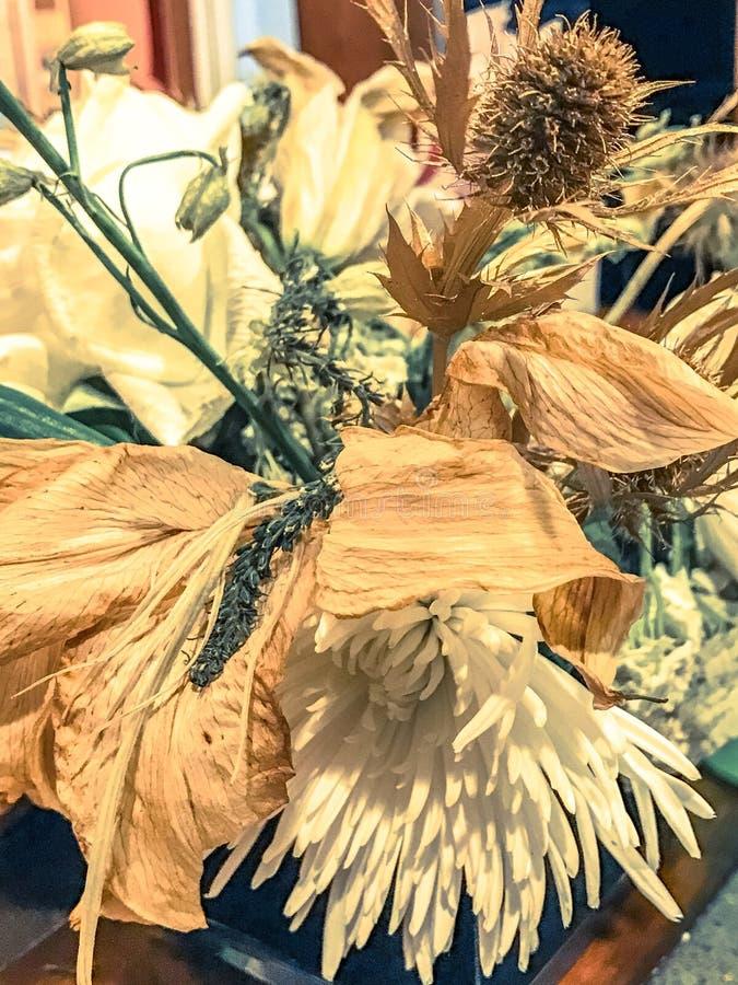 Fleurs mortes photo stock