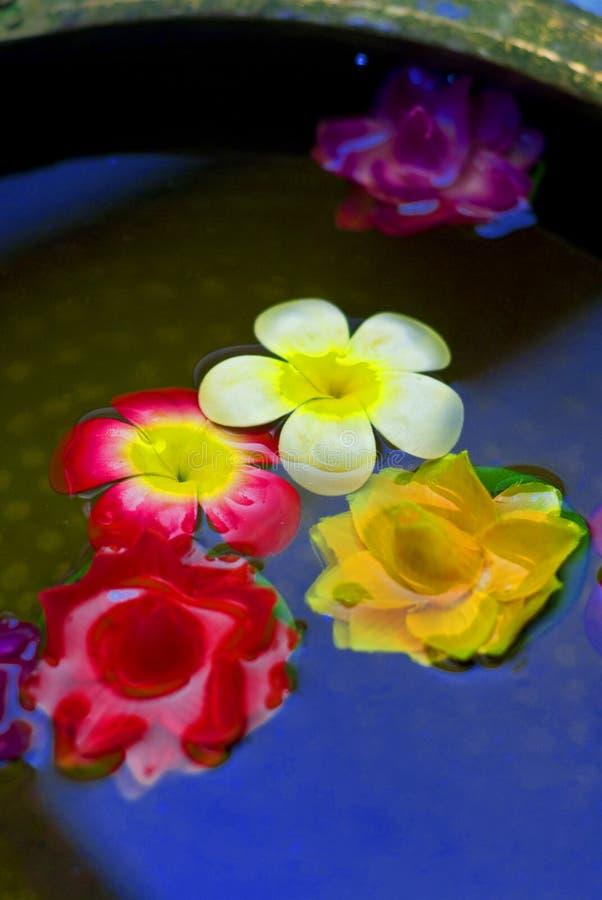 Fleurs ornementales images libres de droits