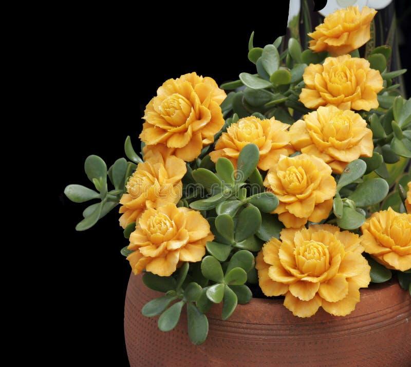 Fleurs ouvrées des raccords en caoutchouc photographie stock