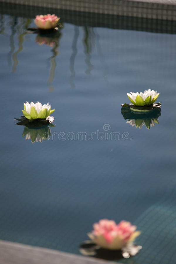 Fleurs par le regroupement photos stock