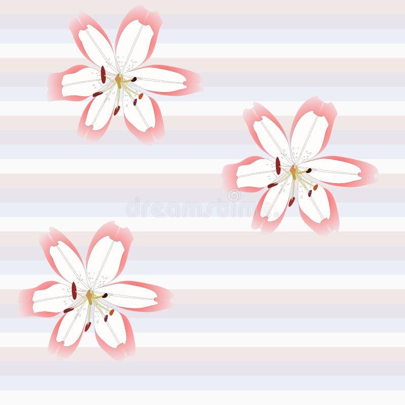Fleurs peu communes de lis sur le fond rayé doux dans le vecteur Configuration florale sans joint illustration de vecteur