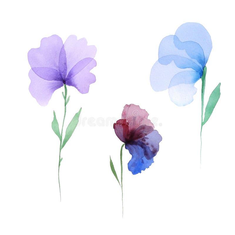 Fleurs posées transparentes photos stock