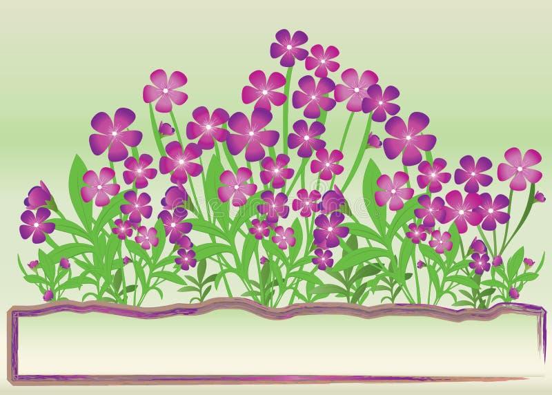 Fleurs pourprées illustration de vecteur