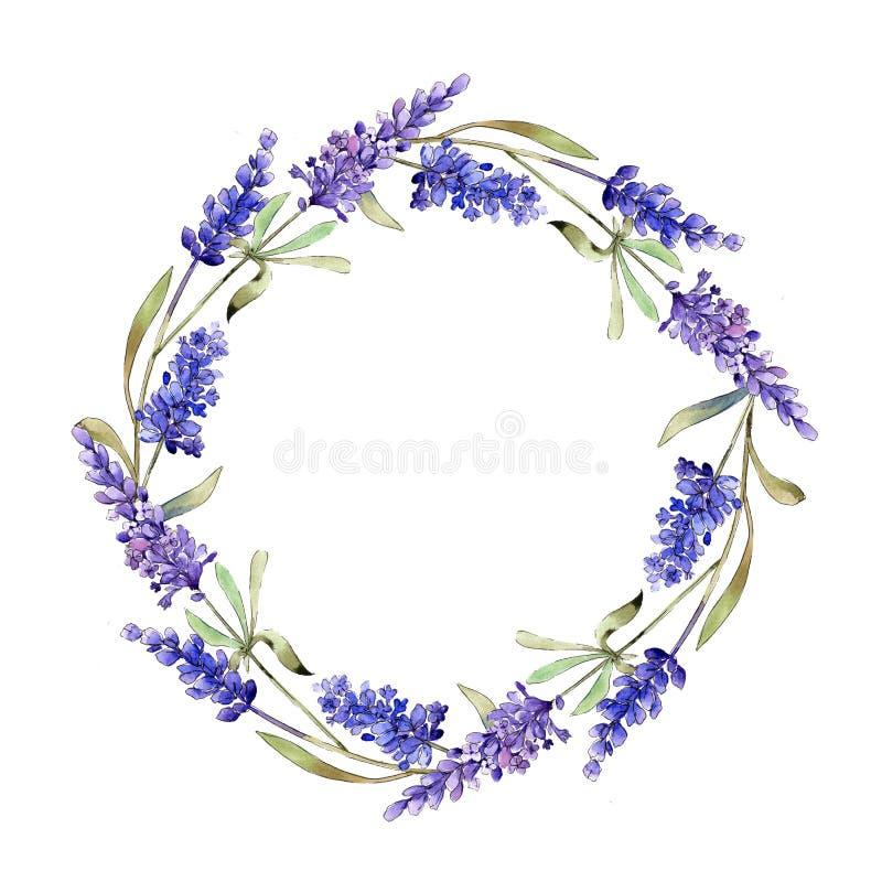 Fleurs pourpres de lavande d'aquarelle Fleur botanique florale Place d'ornement de frontière de vue illustration stock