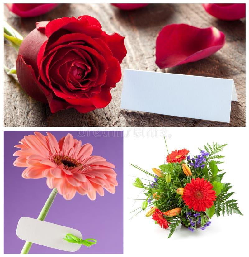 Fleurs réglées photographie stock libre de droits