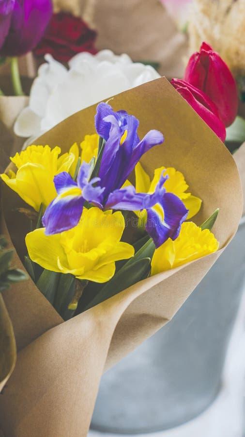 Fleurs réticulées d'iris aux nuances de bleu-pourpre avec le narcisse jaune de fleurs et de bourgeons photos libres de droits