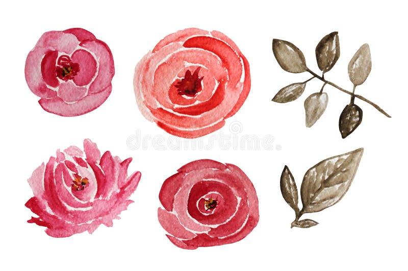 Fleurs roses d'aquarelle illustration stock
