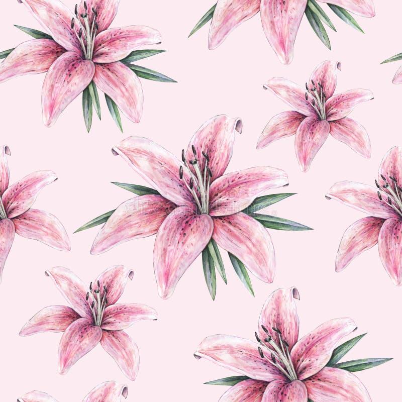 Fleurs roses de lis sur le fond rose Modèle sans couture avec des lis pour la conception illustration stock