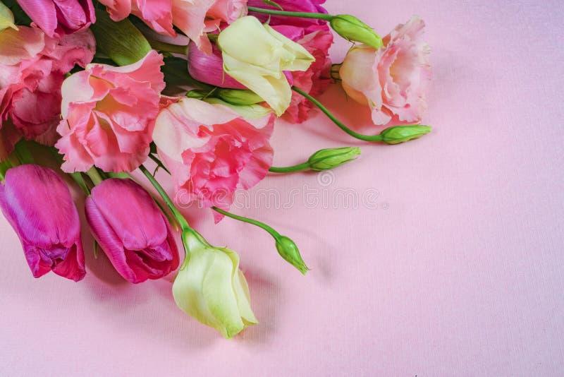 Fleurs roses et blanches sur le fond rose-clair, disposition avec l'espace de texte libre, concept de carte de voeux photo stock