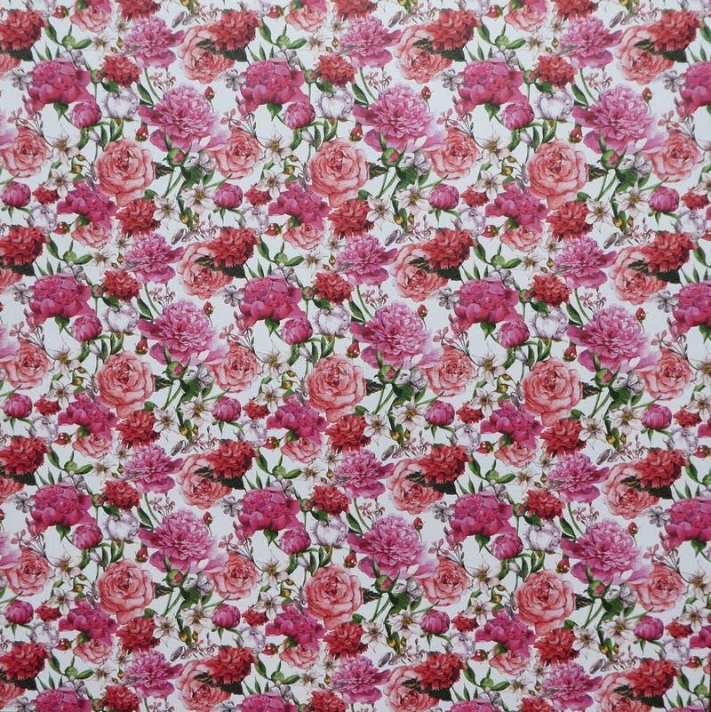 Fleurs roses sur le papier peint blanc de fond photo stock
