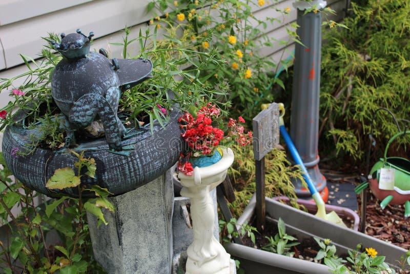 Fleurs rouges et jaunes de bain d'oiseau photographie stock libre de droits