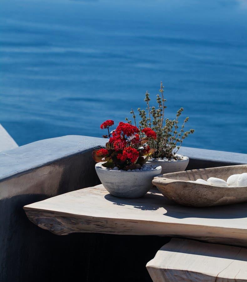 Fleurs rouges sur l'île de Santorini photo stock