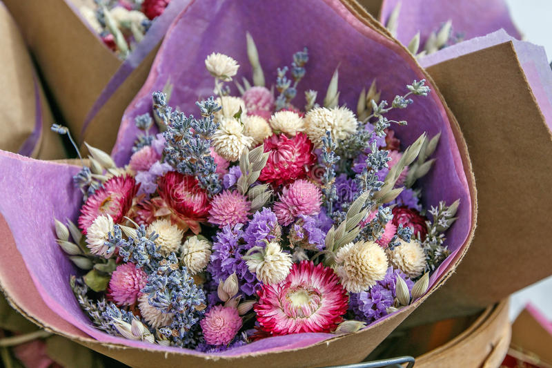 Fleurs sèches photographie stock libre de droits