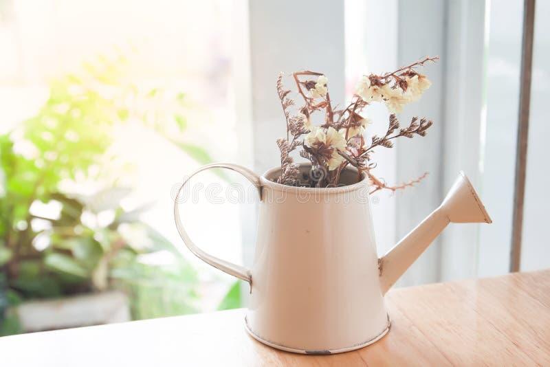 Fleurs sèches dans la théière, décoration à la maison photographie stock libre de droits