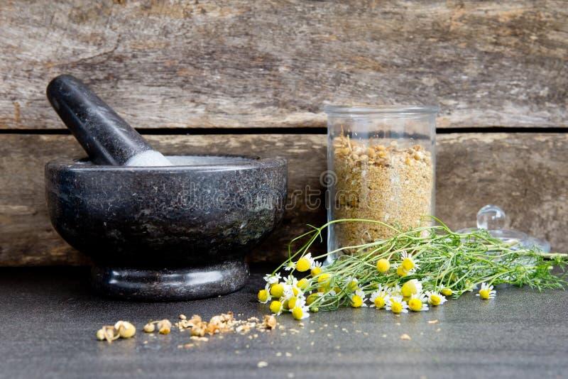Fleurs sèches de camomille dans le mortier et pilon de marbre gris/gris images stock