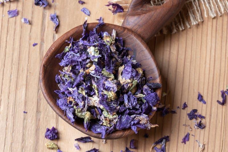 Fleurs sèches de mauritiana de sylvestris de malva, un grand choix de mauve photos stock