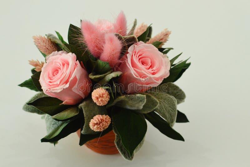 Fleurs sèches pour un décor intérieur photographie stock libre de droits