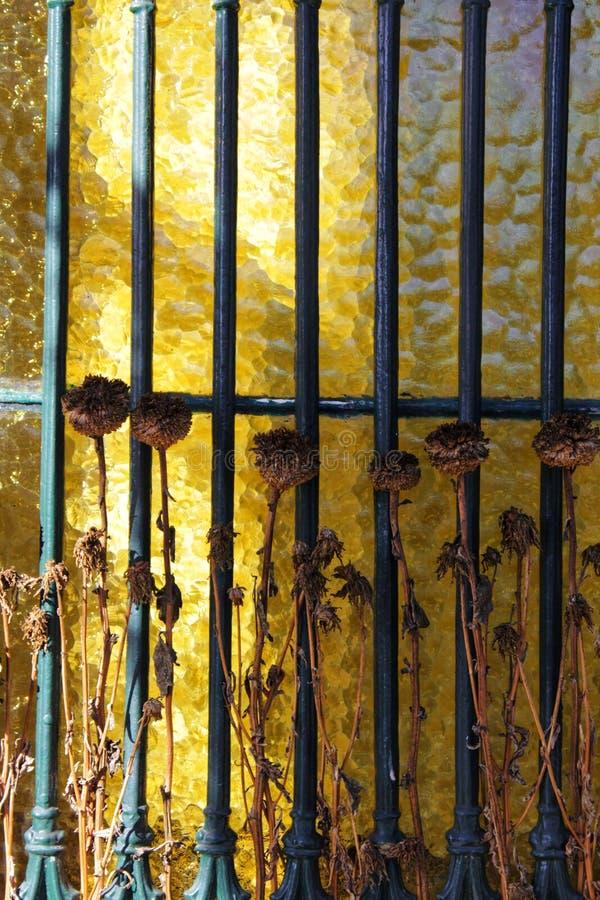 Fleurs sèches sur la porte de cimetière photographie stock libre de droits