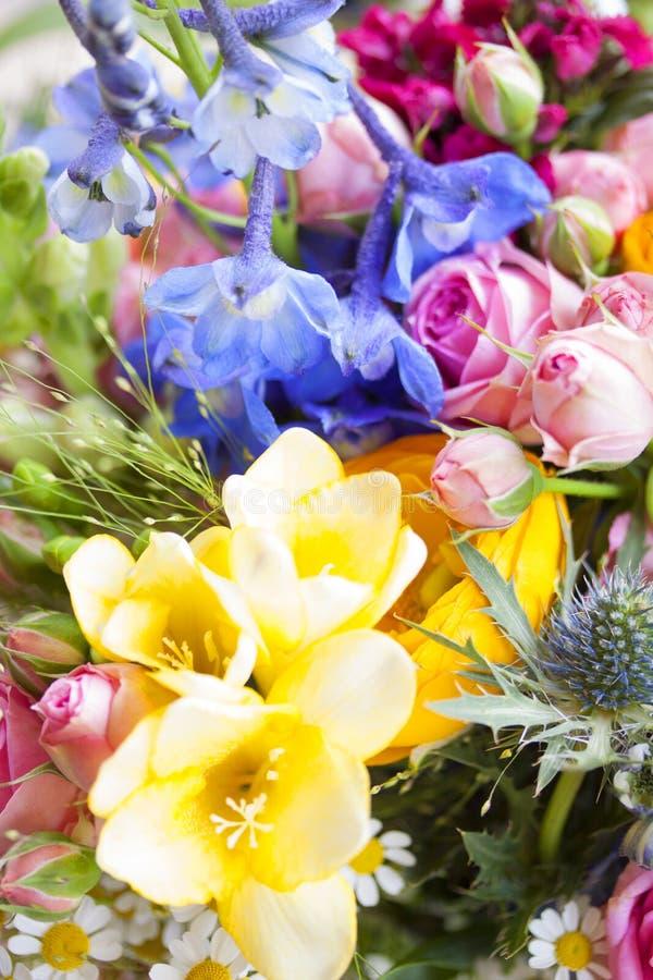 Fleurs sauvages avec les fleurs colorées photos libres de droits