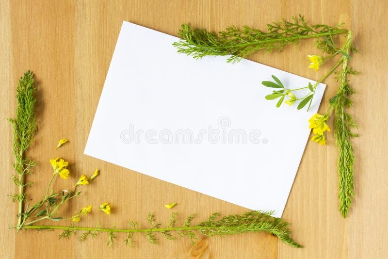 Download Fleurs Sauvages Et Feuilles De Pré Disposées Comme Cadre Sur Le Fond En Bois Feuille De Papier Vide Au Milieu Vue Supérieure Plat Photo stock - Image du salutation, couleur: 77155502