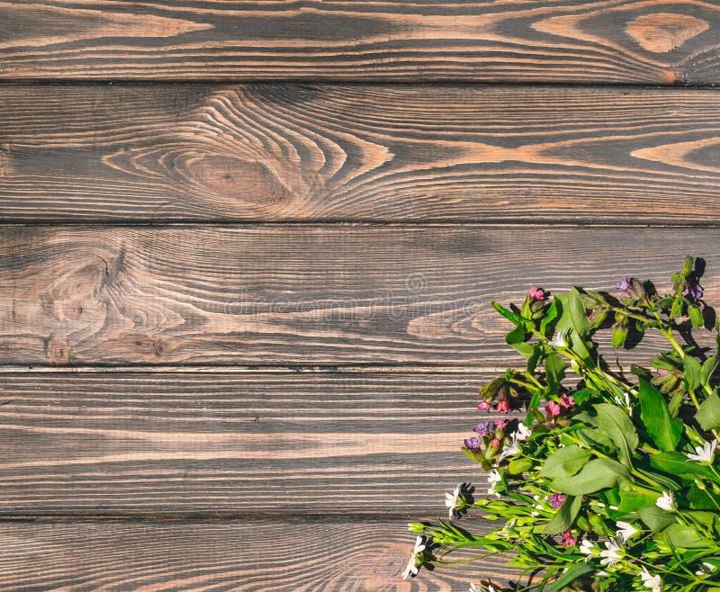 Fleurs sauvages sur le fond en bois en bois de fond Concevez la carte postale pour le festin de la trinité images libres de droits