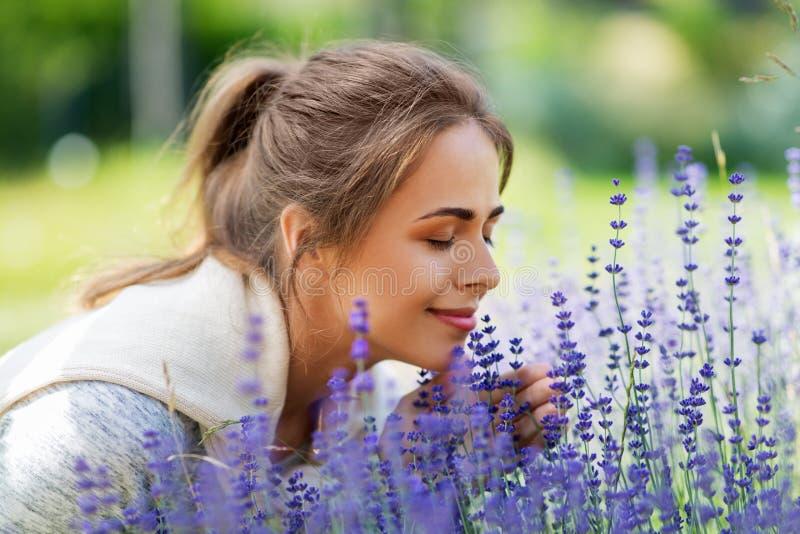 Fleurs sentantes de lavande de jeune femme dans le jardin image stock