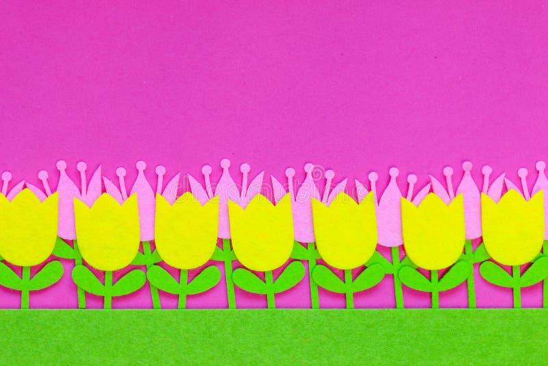 Fleurs senties brillamment colorées de tulipe sur un fond simple illustration stock