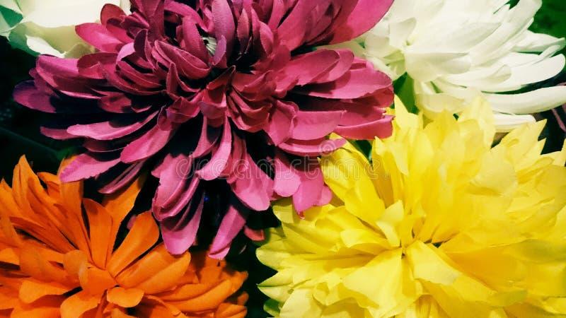 Fleurs stupéfiantes, colourfull images stock